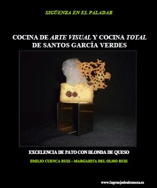 COCINA DE ARTE VISUAL Y COCINA TOTAL DE SANTOS GARCÍA VERDES